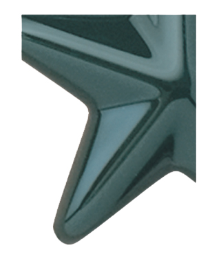 Image of Gemini formed plastic letter using Number 2162 Hunter Green CAB Renewal Plastic.