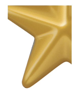 Image of Gemini formed plastic letter using Number 6371 Yellow Gold CAB Renewal Plastic.